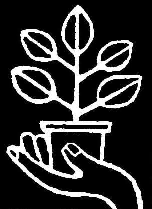 観葉植物レンタル・グリーンレンタルなら東京都目黒区の西花園