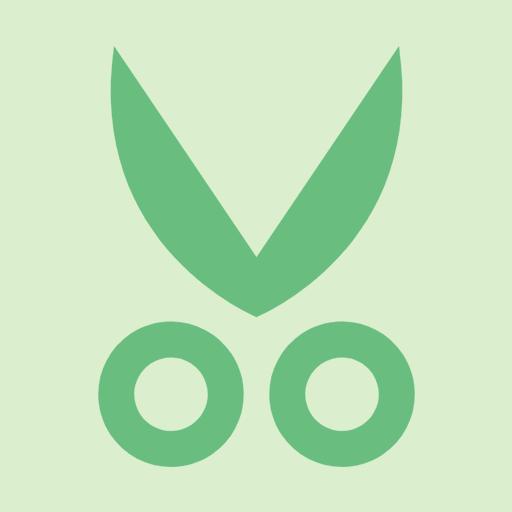 観葉植物の剪定