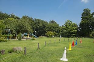 公園の緑化工事と維持管理