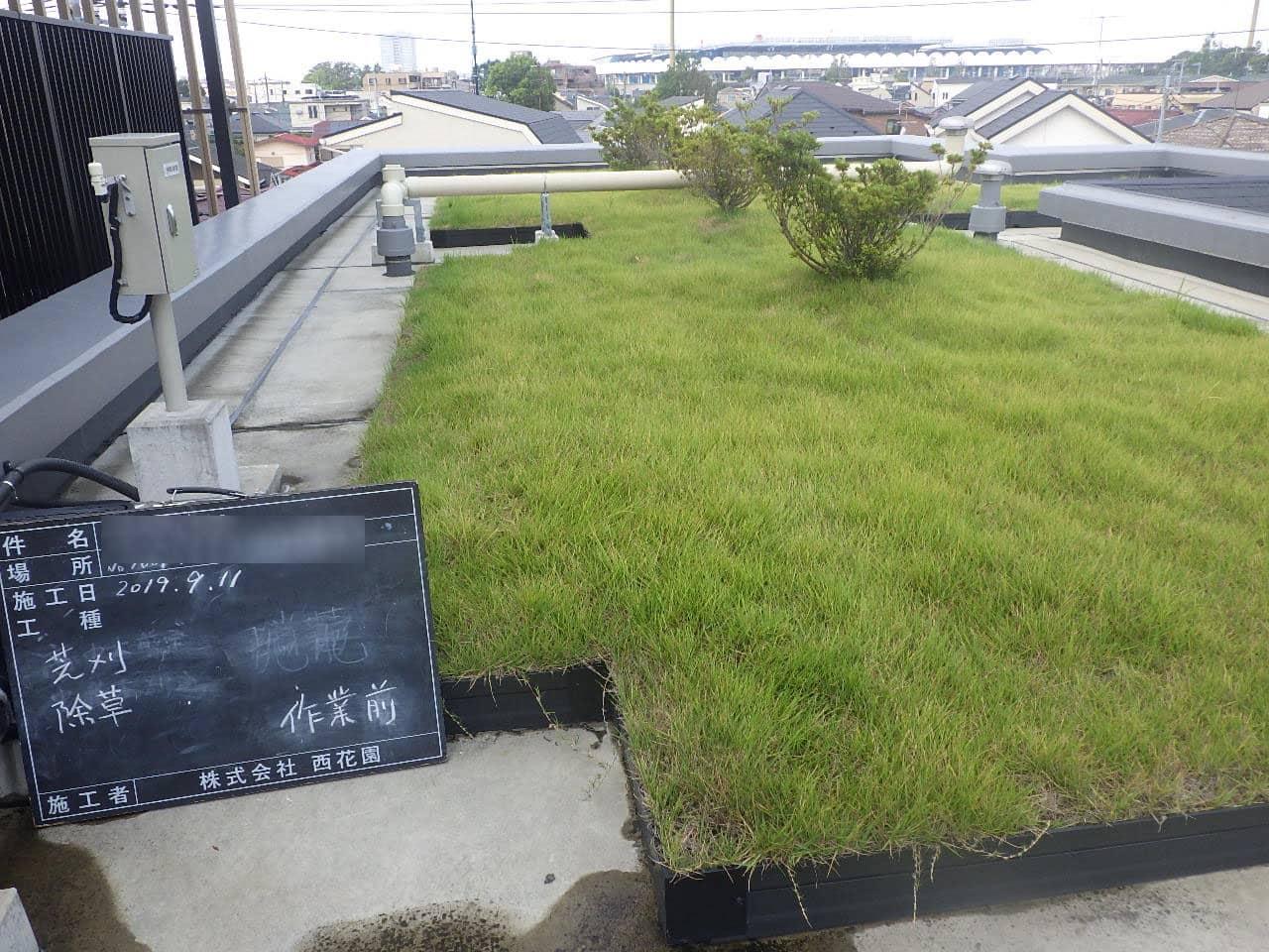 屋上芝刈り | 株式会社西花園導入実績