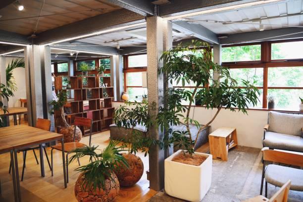 オフィス内のおしゃれな観葉植物